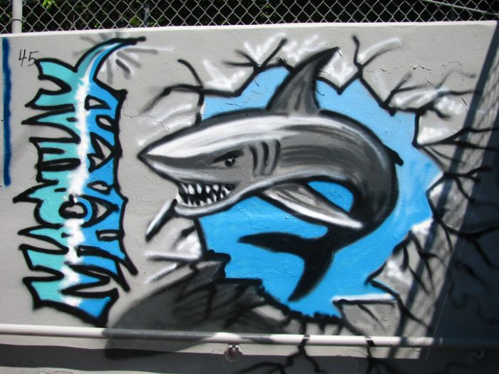 Shark Graffiti Mural Photo Album By Michael Macaulay