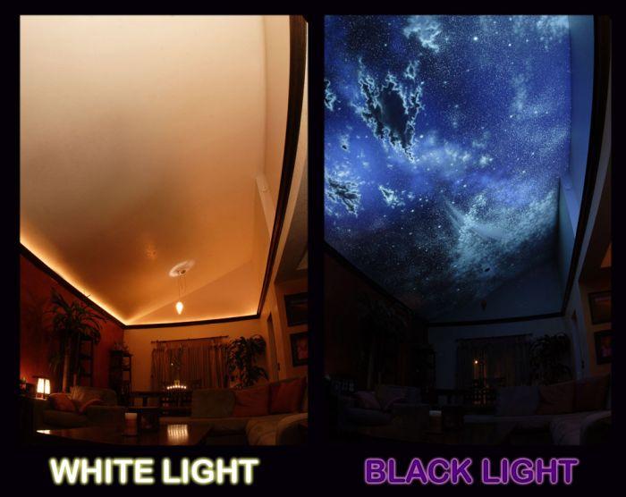 Hidden Night Sky Invisible Black Light Living Room Mural