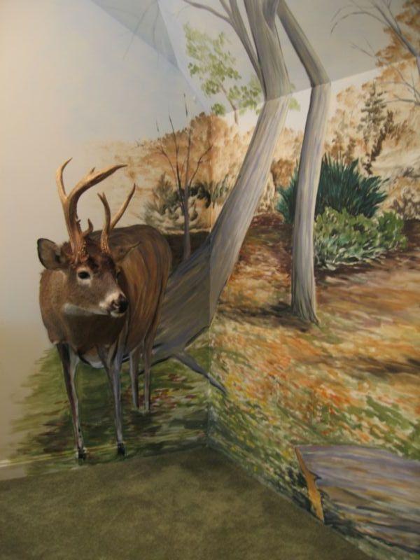 Deer Hunting Wall Murals Best Deer Photos Water AllianceOrg